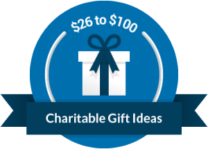 charity donation gift guide canadahelps