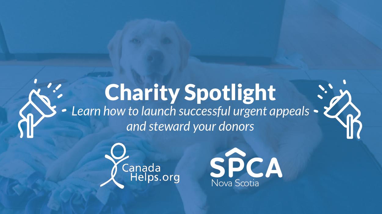 CanadaHelps Charity in the spotlight Nova Scotia SPCA