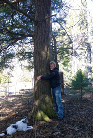 HUGGING A TREE (PHOTO BY DAN KRAUS/NCC STAFF)