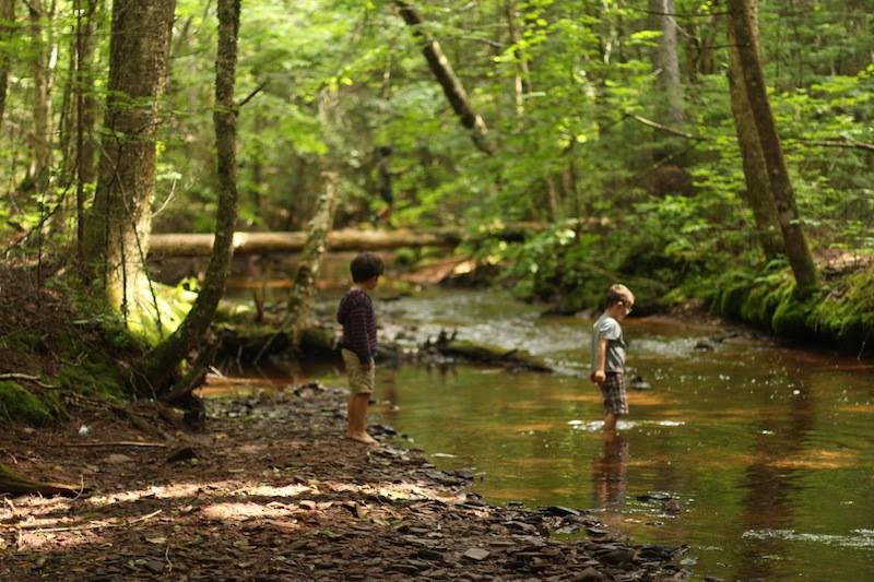 Exploring Orwelll River during summer camp