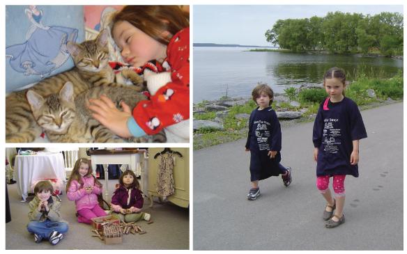 Kitten-Collage