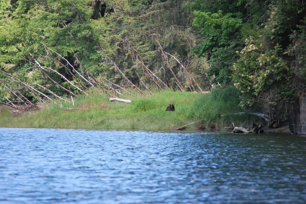 Salmon River Board Tour 5