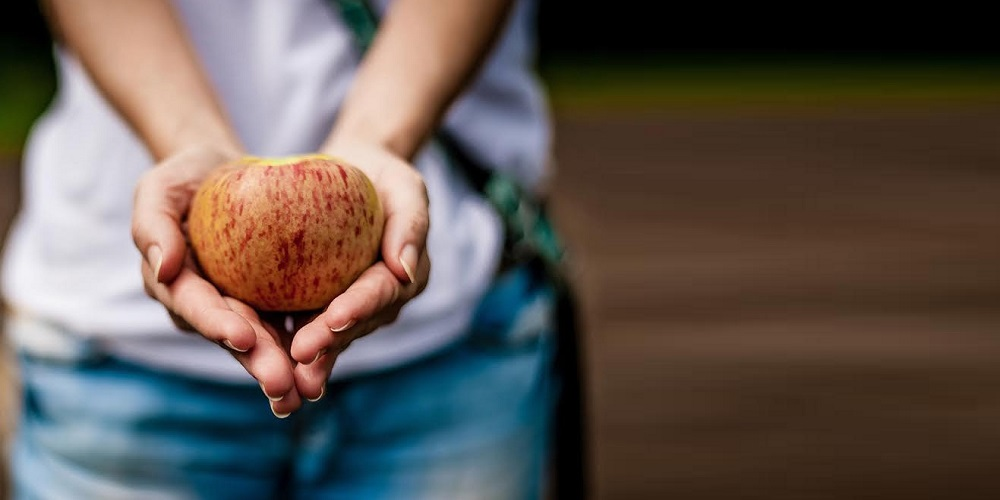 apple-in-hand-3
