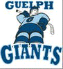 The Guelph Giants Special Hockey Foundation