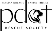 Persian Dreams and Canine Themes Rescue Society