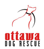 Ottawa Dog Rescue