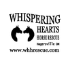 Whispering Hearts Horse Rescue Centre
