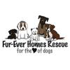 Fur-ever Homes Rescue