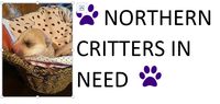 Northern Critters in Need