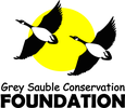 GREY SAUBLE CONSERVATION FOUNDATION