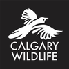 CALGARY WILDLIFE REHABILITATION SOCIETY (C.W.R.S.)