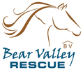 BEAR VALLEY RESCUE
