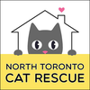 NORTH TORONTO CAT RESCUE