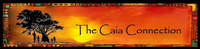 THE CAIA CONNECTION