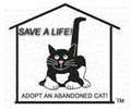ABANDONED CATS RESCUE